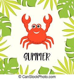 été, vecteur, rouges, crabe