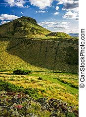 été, vert, ecosse, collines, vue
