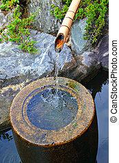 étang, chute eau, bambou, japonais jardin, maison
