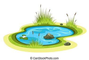étang, dessin animé, jardin