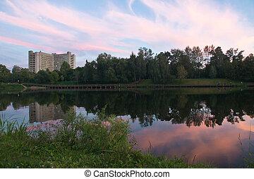 étang, et, forêt, à, coucher soleil