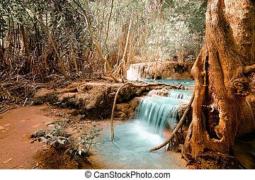 étang, jangle, paysage, fantasme