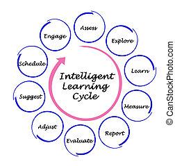 étapes, intelligent, apprentissage, cycle