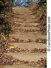 étapes, jardin