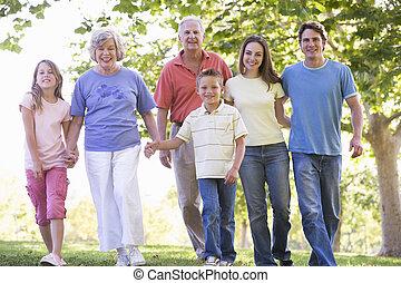 étendu famille, marche, dans parc, tenant mains, et, sourire
