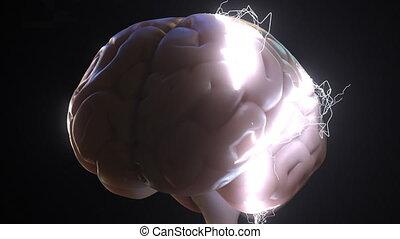 étincelles, sur, idées, apparenté, ou, animation, brain., ...