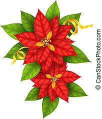 étoile, or, poinsettia, fleurs, noël, ruban