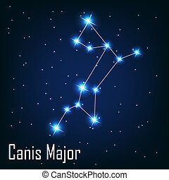 """, étoile, sky., canis, illustration, major"", vecteur, nuit, constellation"