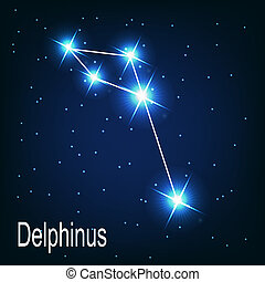 "étoile, sky., ""delphinus"", illustration, vecteur, nuit, constellation"