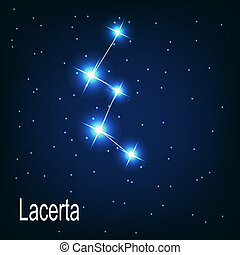 "étoile, sky., illustration, vecteur, ""lacerta"", nuit, constellation"