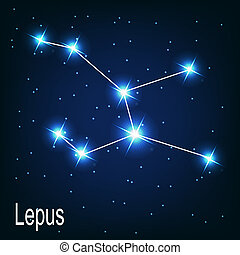 "étoile, sky., illustration, vecteur, ""lepus"", nuit, constellation"