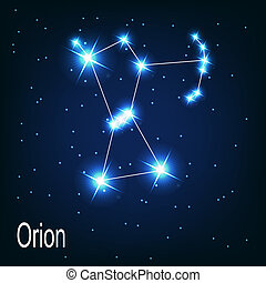 "étoile, sky., ""orion"", illustration, vecteur, nuit, ..."