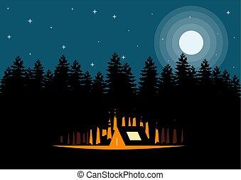 étoiles, lune, nuit