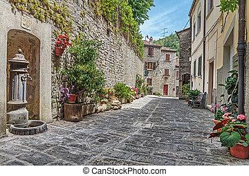 étroit, vieux, pavé, rue, à, fleurs, dans, italie