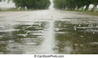 évad, esős