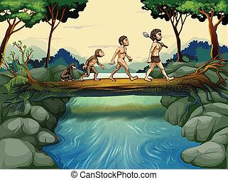 évolution, rivière, homme