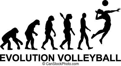 évolution, volley-ball
