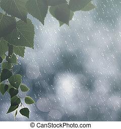 évszaki, nyár, elvont, háttér, eső