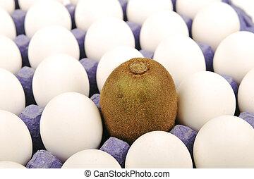 être, différent, kiwi, concept, arrière-plan., thing., feindre, egg., seul, blanc, unique