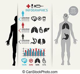 être, ou, gabarit, horizontal, boîte, /, monde médical, coupure, site web, lignes, infographics, graphique, infographic, conception, utilisé, vecteur, disposition