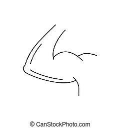ícone, bíceps, esboço, estilo, braço
