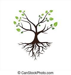 ícone, logotipo, raiz árvore