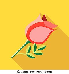 ícone, rosa, estilo, apartamento