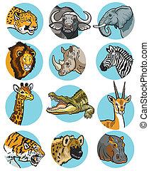 ícones, jogo, animais, selvagem