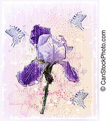íris, flor, grunge, ilustração