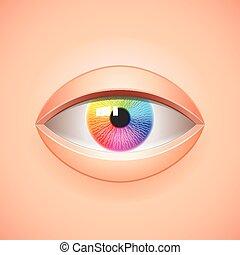 íris, olho, fundo, arco íris, vetorial, human