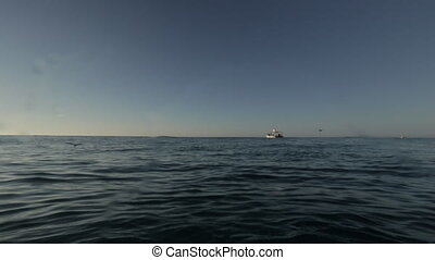 île, étendue, dark-blue, eau, mer, qld