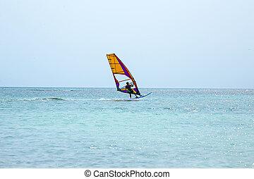 île, antilles, planchiste, mer, aruba