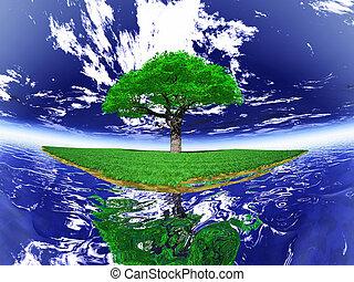 île, arbre, vert