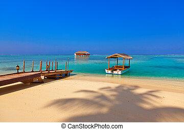 île, bungalow, bateau, maldives