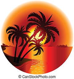 île, coucher soleil, exotique