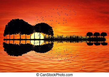 île, guitare, coucher soleil