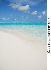 île, lune miel, scène plage, maldives