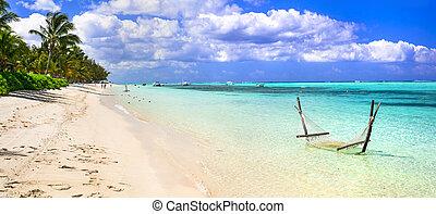 île maurice, holidays., paysage, île, idyllique, plage