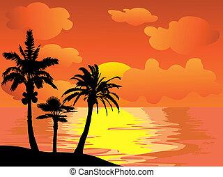 île, paume, coucher soleil, arbres
