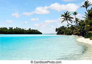 île, pied, aitutaki, lagune, cuisez ilôt, paysage