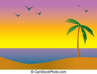 île, plage, coucher soleil