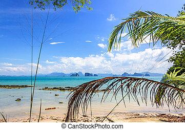île, plage, méridional, thaïlande
