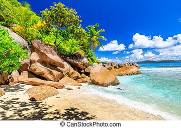 île, seychelles, felicite