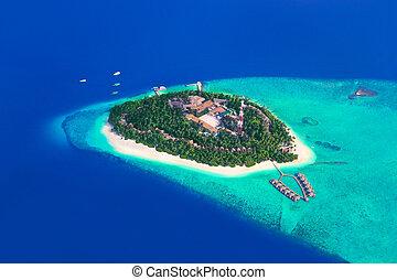 île tropicale, à, maldives