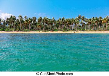 île tropicale, plage, thaïlande