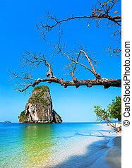 île tropicale, vue., thaïlande, nature, paysage., railay, plage, krabi