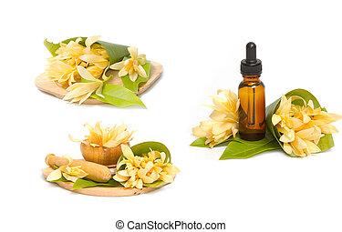 óleo aromatherapy, essencial, champaka, spa