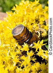 óleo essencial, com, amarelo floresce