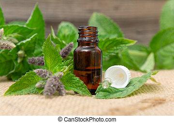 óleo, natural, garrafa, madeira, folhas, menta, vidro, fundo, fresco, hortelã, essencial