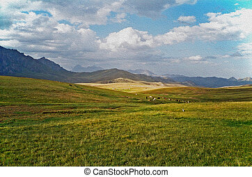 óleo, paisagem, -, pamir, pintura, steppe, asiático, boiada, montanhas